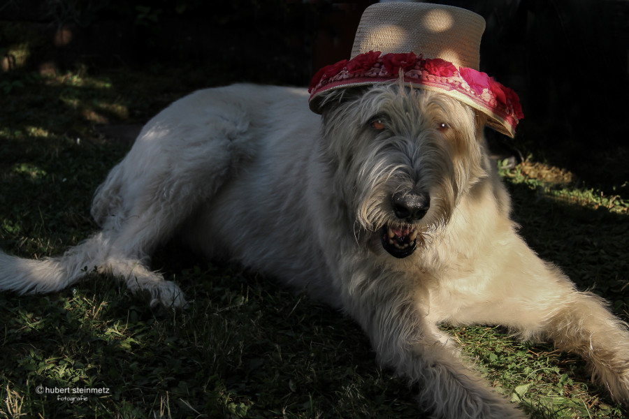 Tinka mit Hut